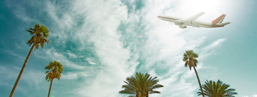 Airliner flying over palm trees